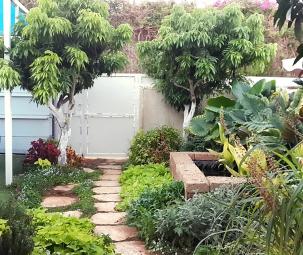 בריכת נוי לגינה