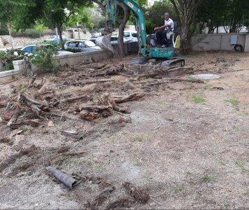 יישור אדמה בגינה