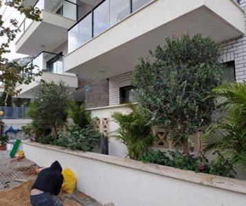 עיצוב גינה בבניין מגורים